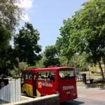 バリコレクションへのバス