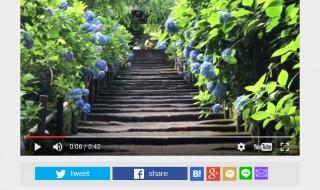 FNNビデオpost 明月院と御霊神社