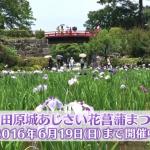 2016-06-13_07h40_34