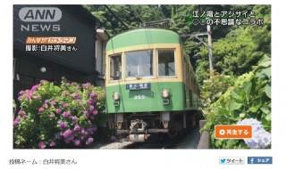 みんながカメラマン 江ノ電とアジサイ