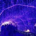 江ノ島シーキャンドルの光のトンネル
