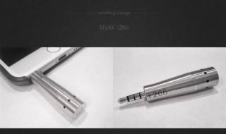 MicW i456