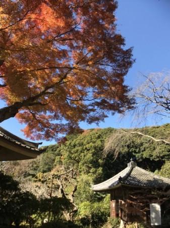 瑞泉寺のどこもく地蔵堂と紅葉