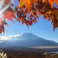 富士山とススキだけでなく紅葉もセットで撮れた
