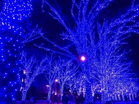 渋谷の青の洞窟