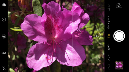 iPhone7 Plus望遠カメラ