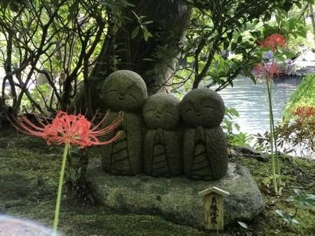 長谷寺のヒガンバナと良縁地蔵をSwitch 6 for iPhone 7 Plus