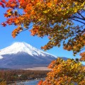 山中湖畔の紅葉&富士山の絶景写真スポット