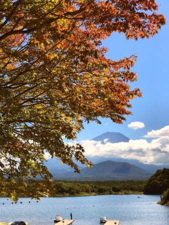 精進湖の紅葉と富士山2018