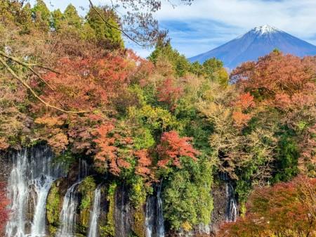 富士山と白糸の滝 2018