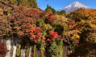 白糸の滝の紅葉と富士山