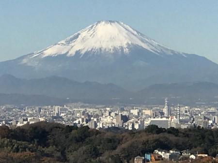 天園ハイキングコースから富士山