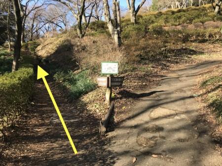 吾妻山公園への階段