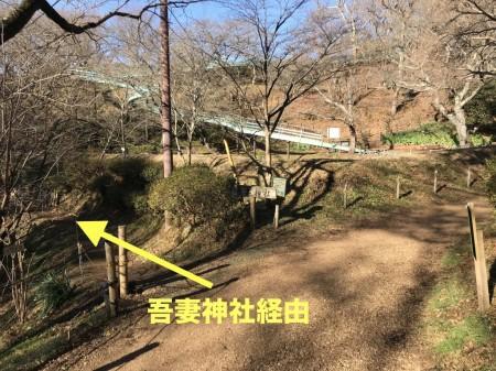 吾妻山公園への道