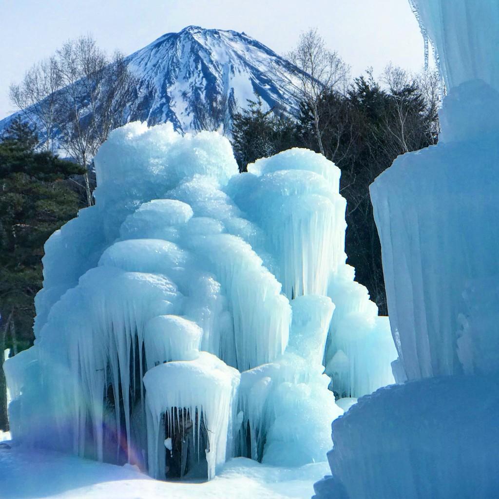 西湖樹氷まつりと富士山
