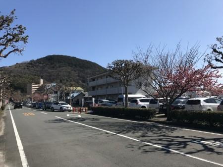 河津の駐車場