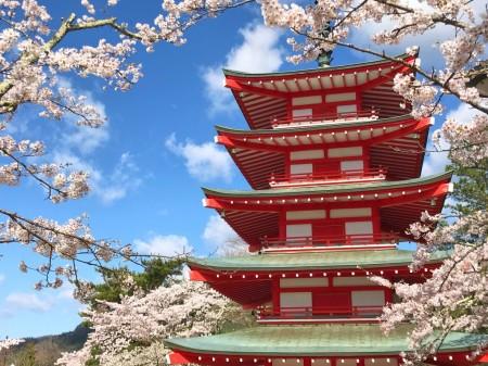 新倉山浅間公園の桜と忠霊塔
