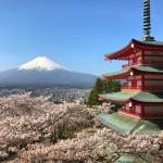 新倉山浅間公園の桜と富士山と忠霊塔