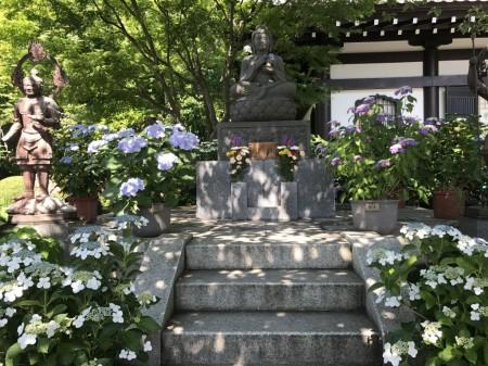 長谷寺のあじさい路入口