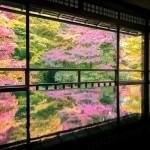 瑠璃光院の紅葉リフレクション