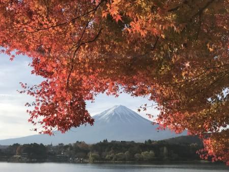 iPhone7 Plusで河口湖の紅葉を撮影