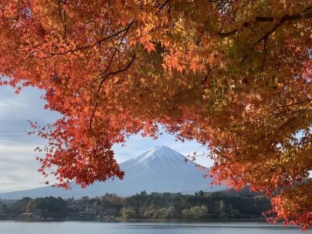 iPhone XS Maxで河口湖の紅葉を撮影