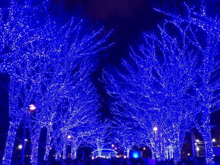 渋谷、青の洞窟をiPhone XS Maxで撮影