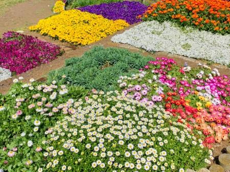 龍厳淵の花壇