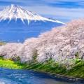 龍厳淵で富士山と桜の絶景を初体験