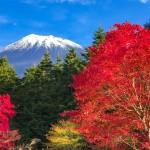 西臼塚の富士山と紅葉
